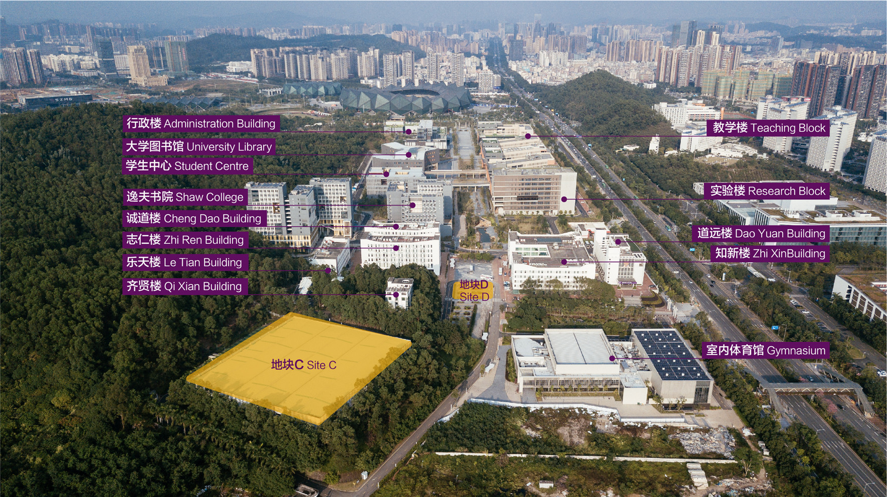 校园下园现状与地块C、D、E  Lower Campus Current Condition and Site C, D, E  ©有方